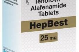 Thuốc Mới Điều Trị Viêm Gan Siêu Vi B - TENOFOVIR ALAFENAMIDE